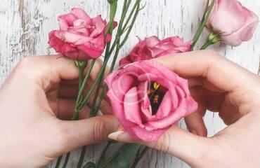 Everlasting beauty of flowers: amazing photoshoot